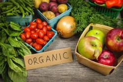Certificare organica in Rusia : Frunza de viata. Organic