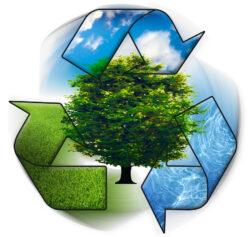 Elevii devin ambasadori pentru o planeta curata prin competitia nationala Fabrica de aer curat