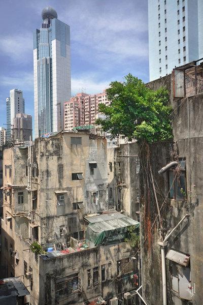 plante-cladiri-beton