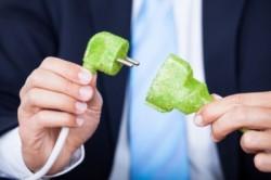 Capitalul natural ar trebui sa devina o preocupare semnificativa a companiilor