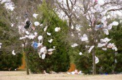 Masuri impotriva pungilor de plastic poluante