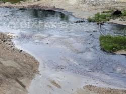 Un parau care se varsa in raul Vedea, in Arges, a fost poluat cu aproximativ 800 de litri de titei