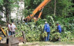 Ordinul Arhitectilor din Romania cere Camerei Deputatilor sa renunte la proiectul legislativ prin care se permite construirea pe 85% dintre spatiile verzi retrocedate