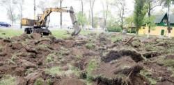 Atacul final asupra spatiilor verzi urbane. Plamanii oraselor, la mana primarilor
