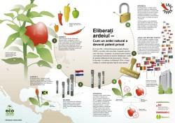 Eco Ruralis: Opozitie la nivel european impotriva patentarii ardeiului de catre compania Syngenta