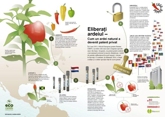 Eco Ruralis: Opozi?ie la nivel european împotriva patent?rii ardeiului de c?tre compania Syngenta