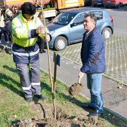 La Deva, a inceput campania de plantare a pomilor