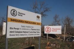 Tăşuleasa Social a plantat copaci într-un parc din Sebeş-Alba. Urmează Pădurea Transilvania!