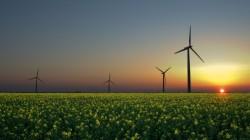 """AFM lanseaza sesiunea de depunere a dosarelor de finantare pentru """"RO06 Energie regenerabila""""- RONDINE,"""
