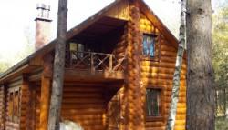 La fiecare 28 de secunde, in Alpi creste lemn cat pentru a construi o casa