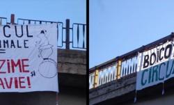 Clujenii, chemati sa boicoteze circul cu animale