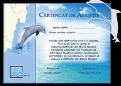 "Campania ""Adopta un delfin"", initiata in vara anului 2012 de catre ONG-ul Mare Nostrum, continua!"