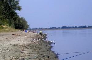 "Rio Bucovina se alatura actiunii ""Let's Do It, Danube!"""