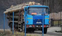 Grupul Ecologic Nera acuza taieri din ariile protejate din judetul Caras-Severin
