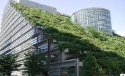 """Propunerea unui ONG: impozit redus pentru """"cladirile verzi"""" in functie de performanta imobilului"""