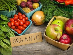 Bal pentru promovarea culturilor bio