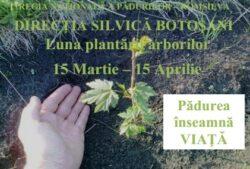 Directia Silvica Botosani continua programul de impadurire a terenurilor degradate