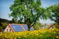 Ponta: Fara legea privind certificatele verzi, creste cu 50% impactul in factura a componentei de energie regenerabila
