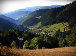 Buzoienii se indreapta cu preponderenta, spre afaceri dezvoltate in mediu rural