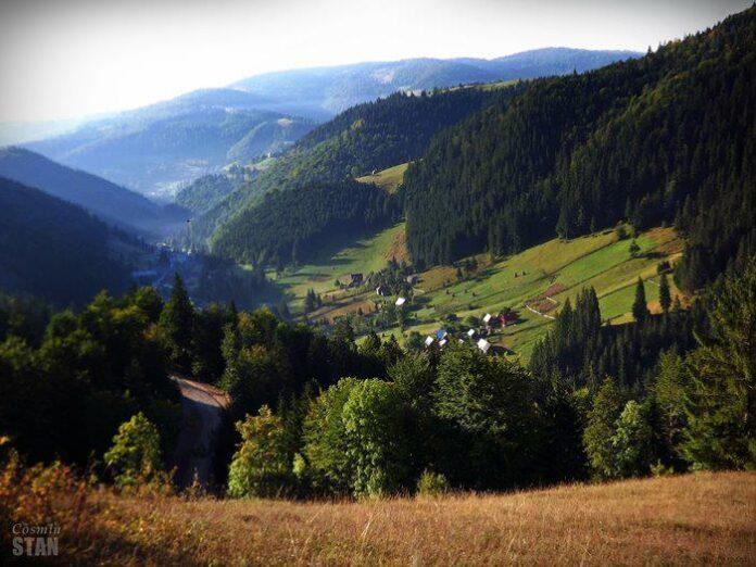 Primele trei programe de dezvoltare rurala au unda verde