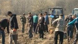 Ziua Internationala a Padurii: Mii de pomi saditi in mai multe raioane din Republica Moldova