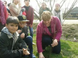 Lectii de plantat pomi pentru 160 de elevi