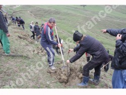 3.500 puieti plantati la Dumitresti, judetul Vrancea