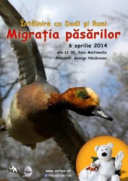Pe 6 aprilie, la Muzeul Antipa, puteti afla cum se comporta pasarile migratoare in decursul unui an