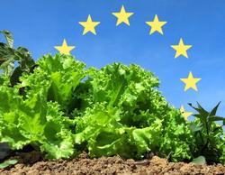 47 de producãtori vasluieni au trecut la agricultura ecologicã