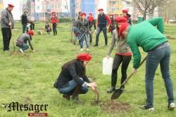 TSD Constanta a derulat o ampla actiune de plantare de copaci in parcul din cartierul Poarta 6