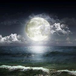 Calendarul celor 13 Luni, a cate 28 de zile, urmareste cu mai mare fidelitate ritmul naturii