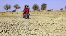 Pentru clima globala bate ceasul al 12-lea