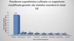 Romania ocupa locul sasein UE  in ceea ce priveste ponderea suprafetelor cultivate cu organisme modificate genetic