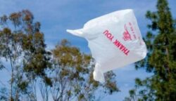 Statele membre UE, obligate sa reduca utilizarea pungilor de plastic