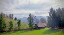De Florii, in toata tara va fi marcata Ziua Nationala a Turismului Rural