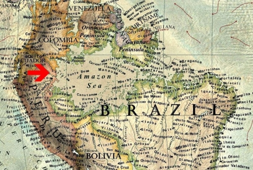 Padurea Amazoniana ar deveni Marea Amazoniana.