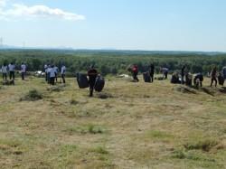 Ecologizarea castrului roman de la Tirighina s-a incheiat
