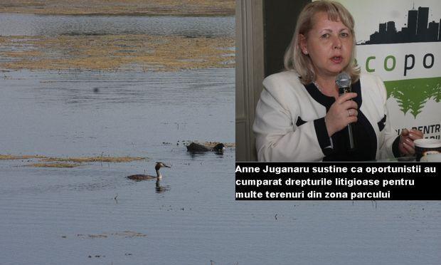 Parcul Natural Urban V?c?re?ti va transforma România într-o Arc? a lui Noe pentru toate ??rile europene
