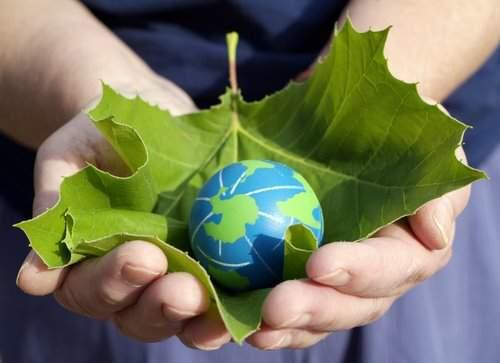 Proiect IT cu impact national: Agentia nationala pentru protectia mediului vrea sa implementeze un sistem informatic cu o valoare estimata la circa opt milioane de euro