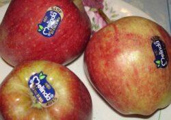 Cum poti citi codurile de pe fructe si legume. Vezi care sunt bio sau modificate genetic