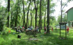 Parcul Natural Lunca Muresului a devenit locul de relaxare al aradenilor