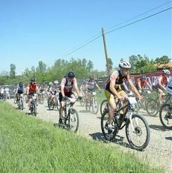 Maraton pe bicicleta prin padure