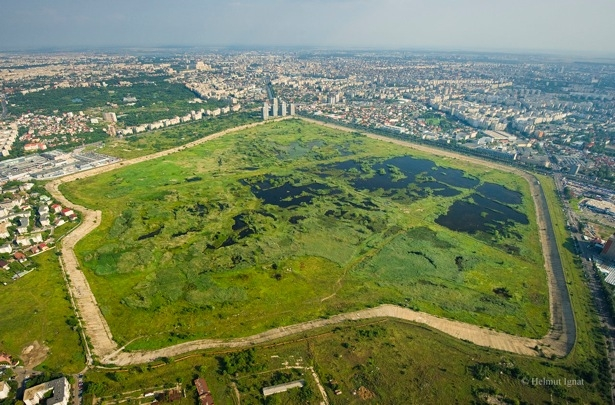 Delta Bucure?tiului nu a primit statut de parc protejat