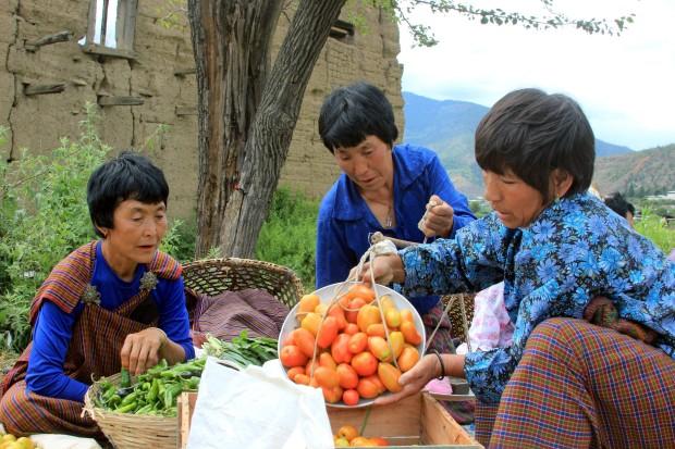 Bhutan, model de agricultura bio pentru intreaga lume