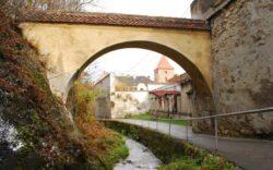 Campanie de preventie a poluarii paraurilor Graft, Timis si a Canalului Timis