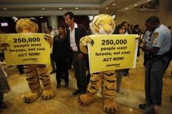 India da vina pe activistii de mediu pentru problemele sale economice