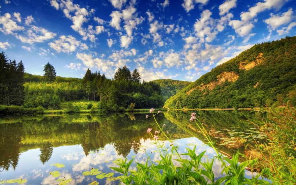 Contemplarea naturii ne ajut? s? avem mai mult autocontrol