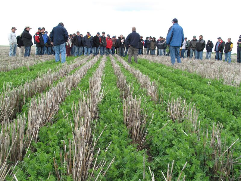 Viitorul agriculturii apar?ine tehnologiei no-till. Se prea poate