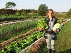Controale mai stricte pentru produsele ecologice