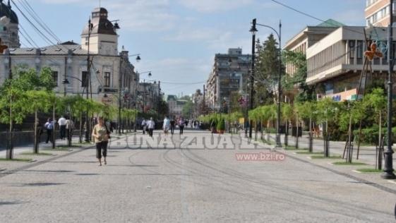Ziua Mediului la Iasi. Primaria opreste mitingul pentru salvarea teilor